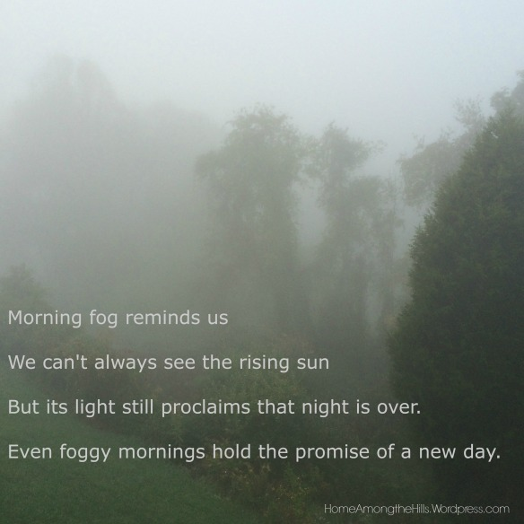 View into the woods on a foggy morning. Text reads: Morning fog reminds us we can't always see the rising sun but its light still proclaims that night is over. Even foggy mornings hold the promise of a new day.